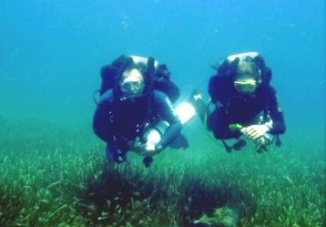 Closed Circuit Rebreather Diver (CCD)