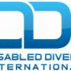 ddi_new_logo