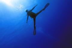 fem_diver